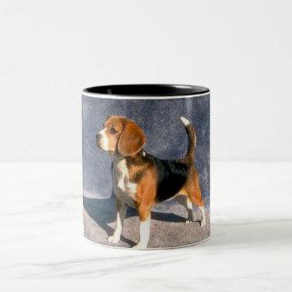 beagle taza de dos tonos