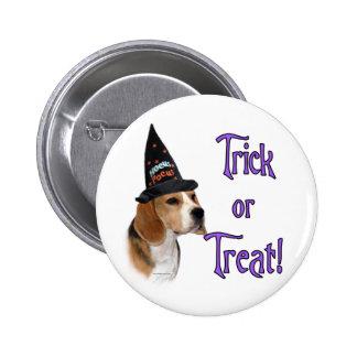 Beagle Trick Pins