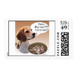 Beagle Turkey Postage