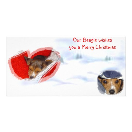 Beagle wishing a Merry Christmas Custom Photo Card
