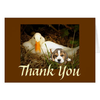 Beagle With Duck Thank You Card