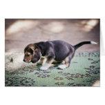 Beagle y hoja del bebé felicitación