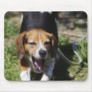 Beagle Yawn Mouse Pad