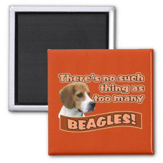 BEAGLES 2 INCH SQUARE MAGNET
