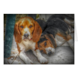 Beagles de Brother Tarjeta De Felicitación