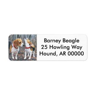 Beagles en las maderas etiquetas de remite