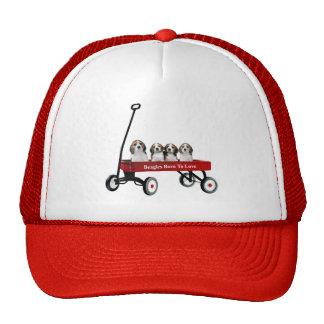 Beagles In Wagon Hat