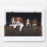 Beagles Mouse Pad