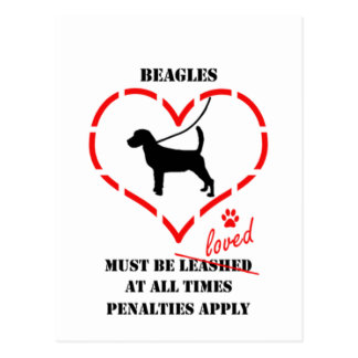 Beagles Must Be Loved Postcard
