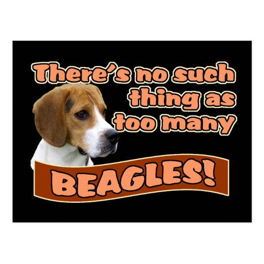 BEAGLES POSTCARD
