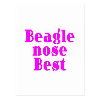 Beagles rosados divertidos: Nariz del beagle mejor Postal