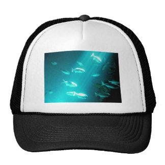 Beam of Light Underwater Fish Swimming Trucker Hat