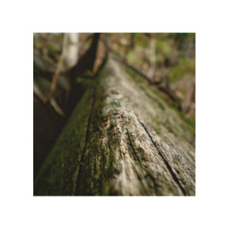 Beam Wood Print