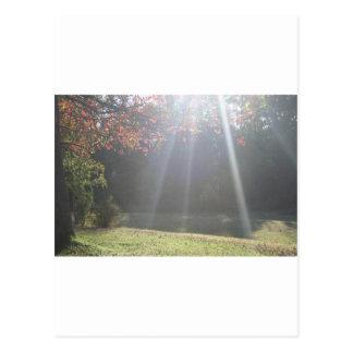 Beaming Sun Rays Postcard