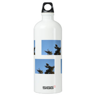 BEAMS Bald Eagle and Magpie Staredown Aluminum Water Bottle