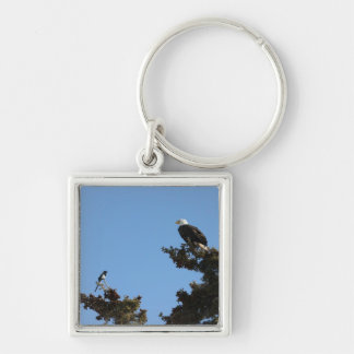 BEAMS Bald Eagle and Magpie Staredown Keychain