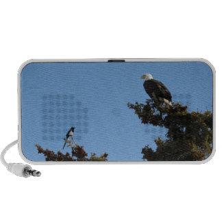 BEAMS Bald Eagle and Magpie Staredown Mini Speaker