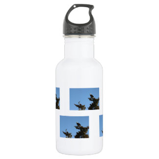 BEAMS Bald Eagle and Magpie Staredown Stainless Steel Water Bottle