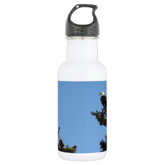 BEAMS Bald Eagle and Magpie Staredown Water Bottle