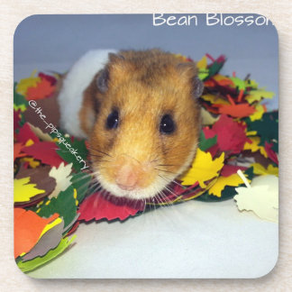 Bean Blossom in the Leaves Beverage Coaster