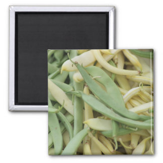 Bean Themed 2 Inch Square Magnet