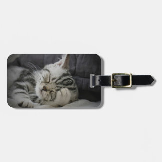 Beanie Travel Tag Tag For Bags