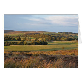 """""""Beanly Moor""""  view 2 Card"""