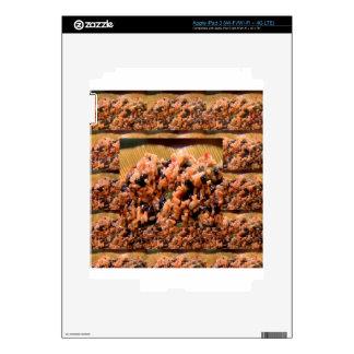 Beans Rice American Chefs Healthy Kitchen Cuisine iPad 3 Skin