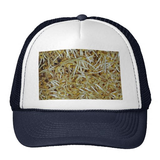 Beansprouts Gorras