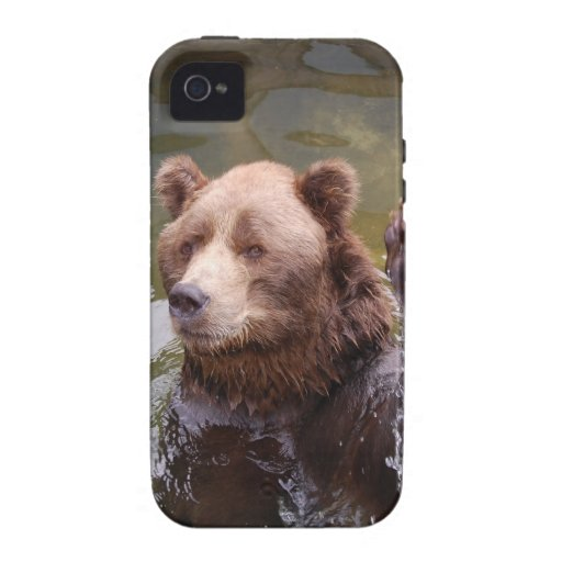 bear-78 vibe iPhone 4 cover