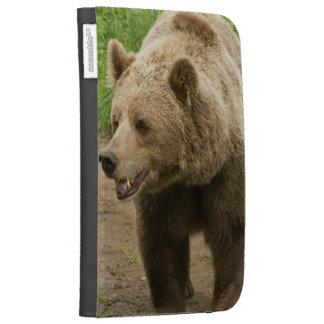 bear-88.jpg case for kindle