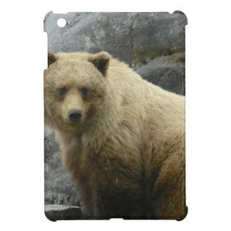 Bear Alaska Animals Destiny Nature Cover For The iPad Mini