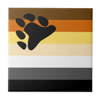 Bear and Cub Community LGBT Gay Pride Flag Small Square Tile