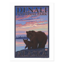 Bear and Cub - Denali National Park, Alaska Postcard