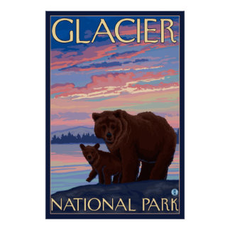 Bear and Cub - Glacier National Park, MT Poster
