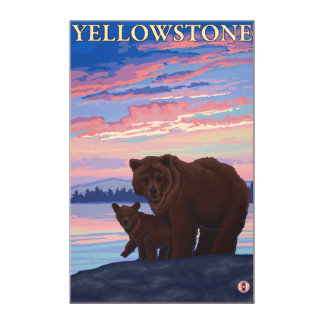 Bear and Cub - Yellowstone National Park Stretched Canvas Print