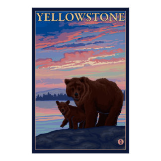 Bear and Cub - Yellowstone National Park Poster