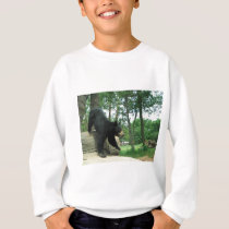 Bear at play sweatshirt