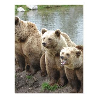 Bear bears animal custom personalize Anniversaries Letterhead