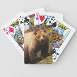 bear bicycle card decks