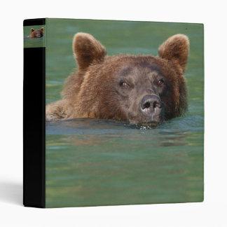 bear binders