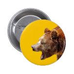 bear boton