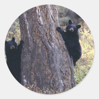 bear classic round sticker