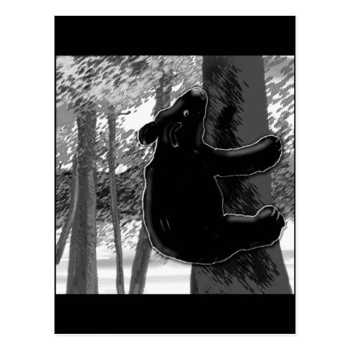 Bear Climbing Tree B/W Postcard