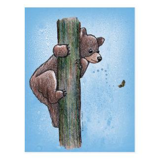 Bear Climbing Tree Postcard