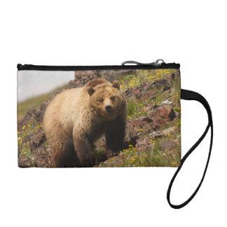 bear coin wallet