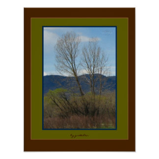Bear Creek Path Mountain Foothills Photo Poster