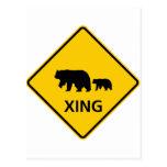 Bear Crossing Highway Sign Post Card