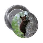 Bear Cub Climbing a Tree 2 Inch Round Button