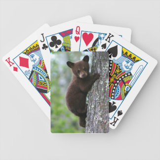 Bear Cub Climbing a Tree Bicycle Playing Cards